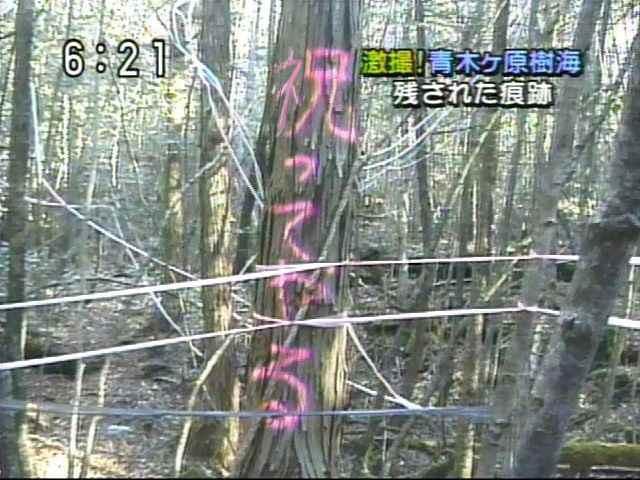 【気象予報士】井田寛子さんPart20【NW9】->画像>655枚